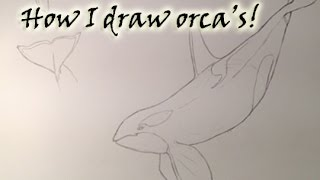 How I draw orca