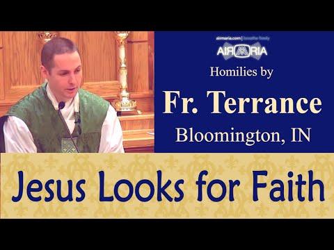 Jesus Looks for Faith First - Jan 15 - Homily - Fr Terrance