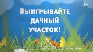 ВЕСЕННИЙ МАРАФОН на Радио Дача