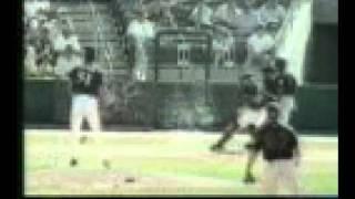 ball hits bird