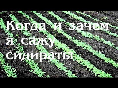 миникультиватор Торнадо купить в Украине - YouTube