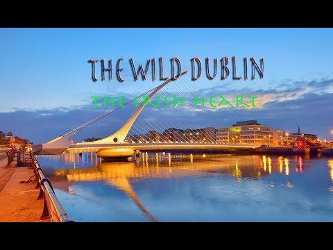 Dublin City ( Republic of Ireland ) | Travel destination | Europe