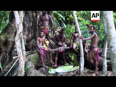Kava - the ancient spiritual drink