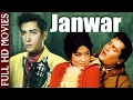 Janwar l Shammi Kapoor, Rajendernath, Rajshree l Hit Romantic Movie