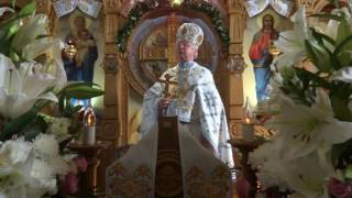 Проповідь прот. Євгена Толочкевича в свято Покрови Пресвятої Богородиці