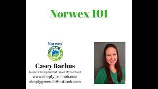 Norwex 101