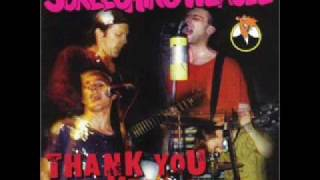 Watch Screeching Weasel 27 Things I Wanna Do To You video