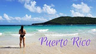 BEST BEACH IN THE WORLD | Puerto Rico Trip 2019!