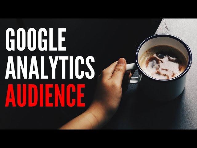 Google Analytics: Audience | Writers Motion