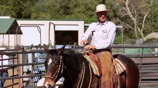 "7 Clinics with Buck Brannaman - SNEAK PEEK ""Building Confidence"""