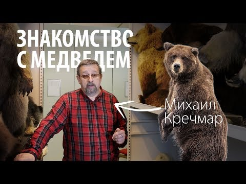 О медведях. Михаил Кречмар