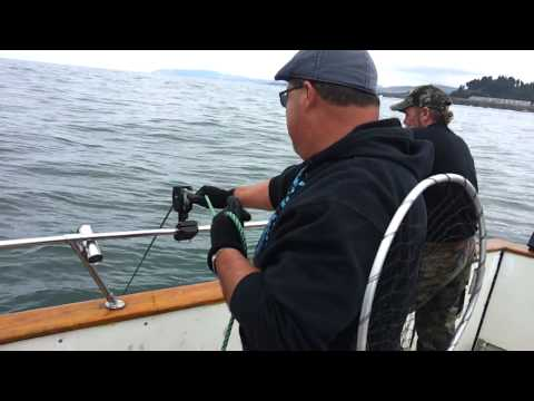 Depoe bay fishing charters doovi for Depoe bay fishing charters