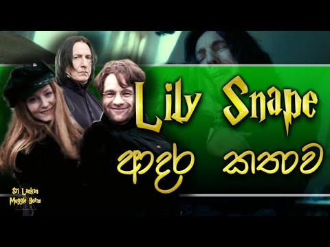 Lily ඇයි James ව තෝරාගත්තේ? | Why Lily Chose James | Harry Potter | Sinhala Explaining