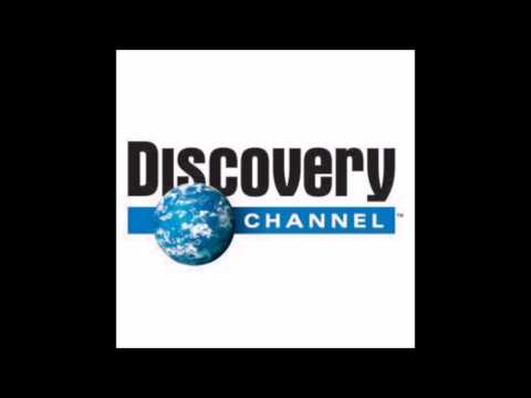 Čoko diskavery šanel mošoráň /Discovery channel Hungary/