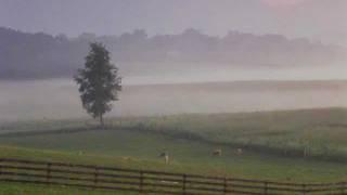 Pat Metheny Country Poem