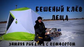 Как поймать леща зимой Бешеный клев леща Зимняя рыбалка с домашним комфортом