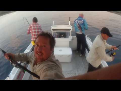 Fishing 100km Off Mackay QLD