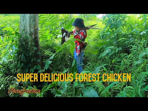 EP 06:The girl making a crossbow goes hunting wild chickens  on rainy days-bushcraft-solo camping
