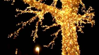 видео Гирлянды для деревьев