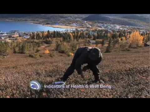 Inuit Health Study