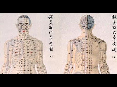 """Семинар к.м.н. Зайцева С.В. """" Селезенка в традиционной китайской медицине"""""""