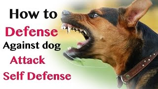How to Defend against Dog Attack - Self Defence thumbnail