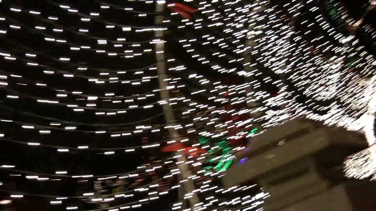 Carriage Ride Through Tilles Park & Winter Wonderland Of Lights ...
