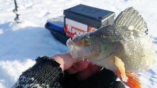 КАК МЫ НА МАЛУЮ РЕЧКУ ХОДИЛИ Зимняя рыбалка 2021 в Сибири мороз и солнце