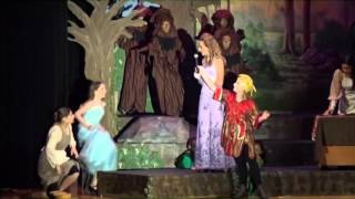 into the woods jr full show
