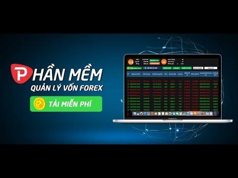 Smart forex system software