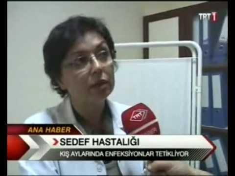 Prof.Dr. Neslihan Şendur TRT Haber 23.12.2012