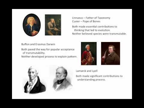 History of Evolutionary Thought 2