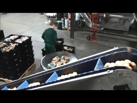 JASA Packaging Systems - JASA 350