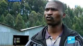 Rwanda, le Singapour africain des années2020?