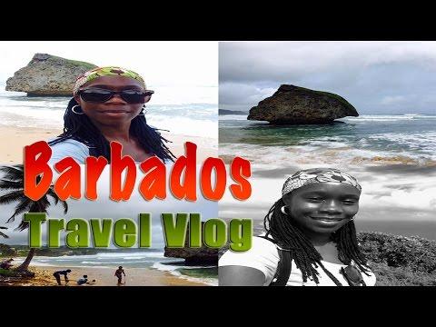 Barbados Island Safari | The Living Fruits