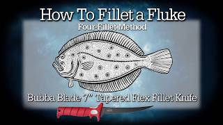How To Fillet a Fluke