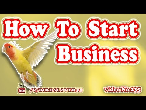 How To Start Birds Business Video No 235