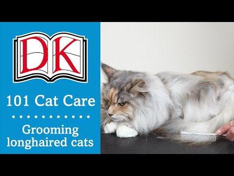 101 Cat Care: Cat Grooming for Longhaired Cats
