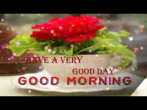 Good Morning Video For Lovely Sister Best Wishes Whatsaap Video E