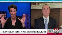 """""""Flooding The Zone With Excrement"""": Rep. Schiff Explains Trump's Flynn Strategy on MSNBC"""