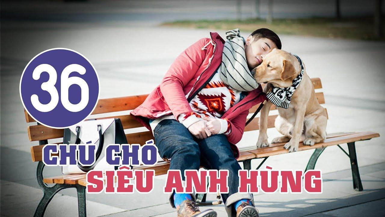 image Chú Chó Siêu Anh Hùng - Tập 36 | Tuyển Tập Phim Hài Hước Đáng Yêu