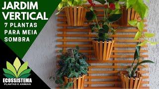 7 plantas para jardins verticais para ser cultivada a meia sombra