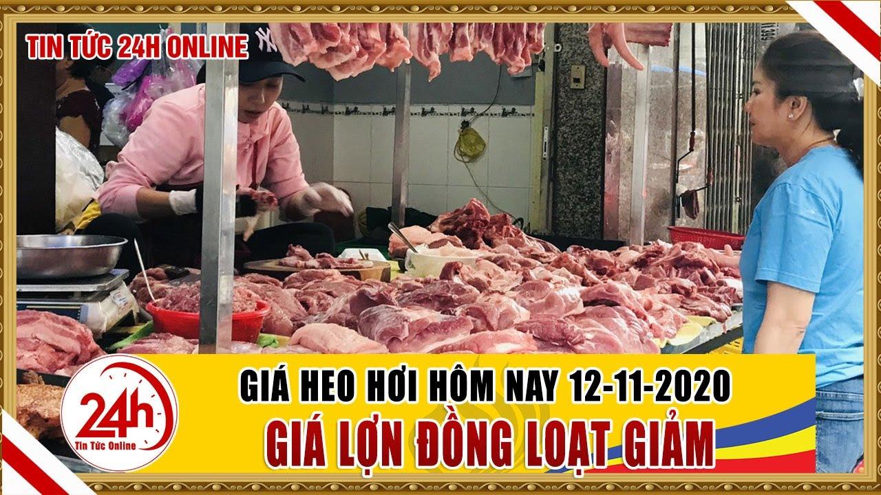 Giá heo hơi ngày hôm nay 12/11/2020 Giá heo hơi thay đổi thế nào ? cập nhật giá lợn hơi mới nhất
