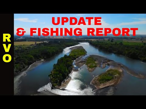 YELLOWSTONE RIVER UPDATE & FISHING REPORT -7/26/2018
