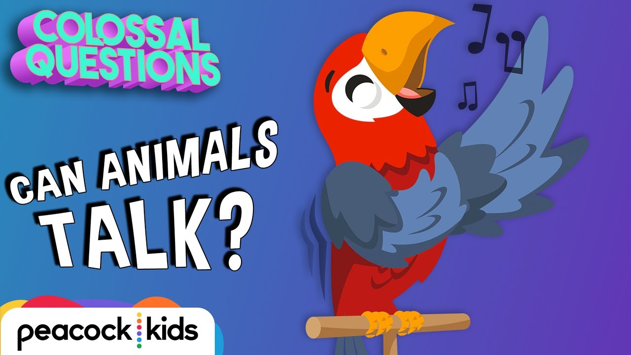 Can Animals Talk To Each Other?   COLOSSAL QUESTIONS