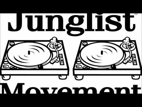 DJ HYPE old skool jungle