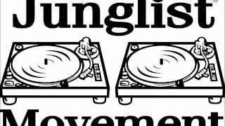 DJ HYPE oldskool jungle