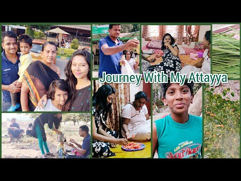 #Vlog  / Journey With My Attayya / Munagaaku Fry by Attayya / AshaSudarsan Telugu Vlogs