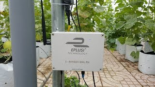 Eplusi - Hệ thống nông nghiệp thông minh ứng dụng công nghệ IoT