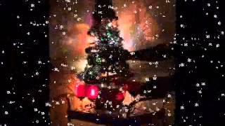 Wine Glass Snow Carols - Ta Kalanda
